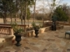 texas-landscape-stone-patio