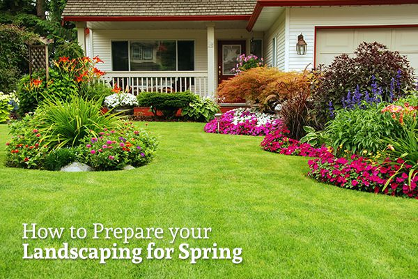 "A well tended-to lawn with grass, bushes, and flowers with the words ""How to Prepare your Landscaping for Spring"""